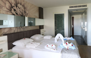 Superior Room With Jacuzzi